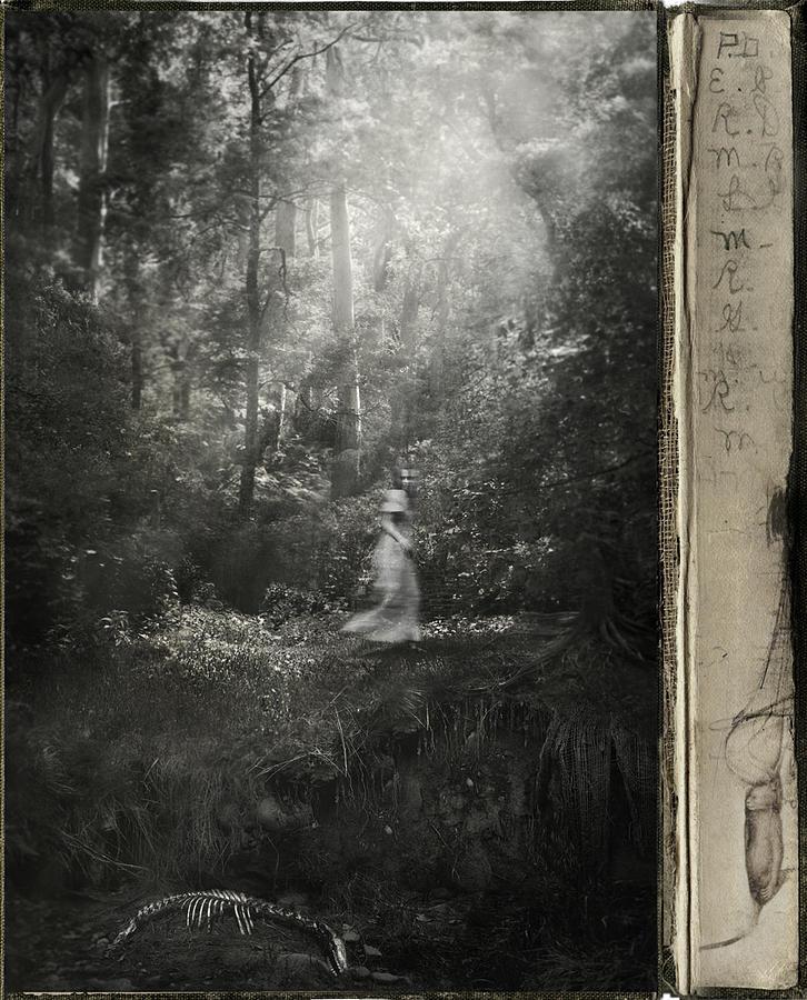 Sehnnucht Photograph by Hsien -Ku