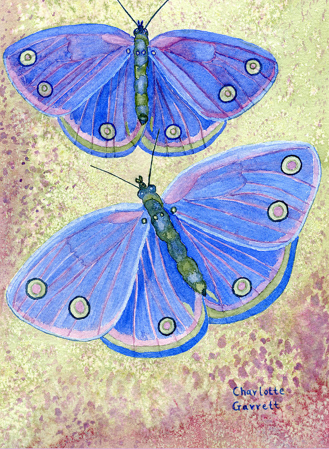 Self Expression Butterfly by Charlotte Garrett
