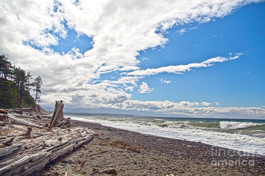 Sequim Bay State Park Photograph - Sequim Beach by Molly Heng