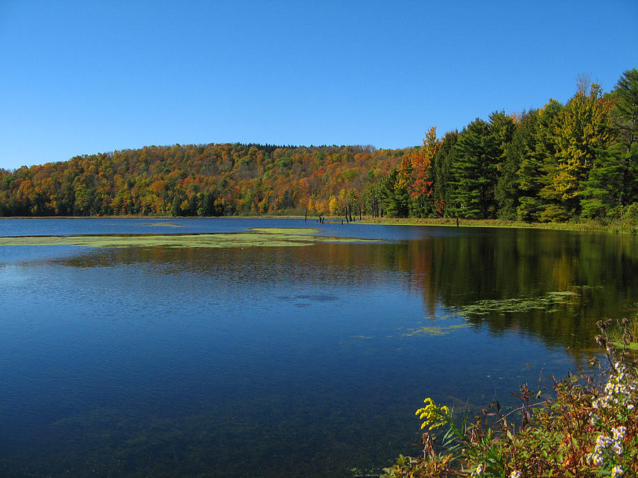 Lake Photograph - Serene Lake In Fall by Leontine Vandermeer