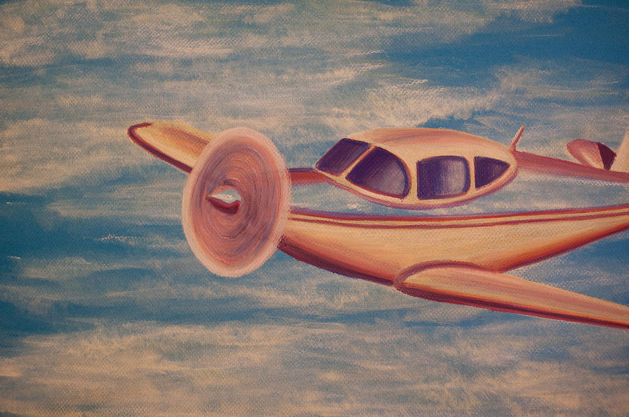 Plane Painting - Serene Skies by Thomas Maynard