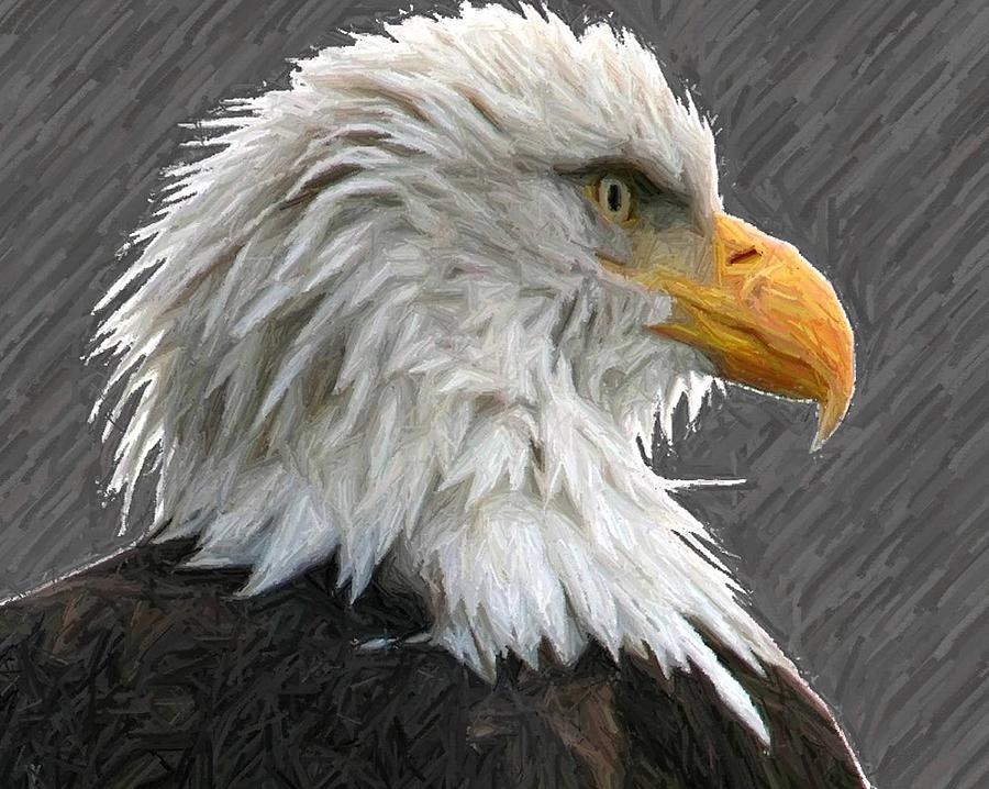 Bald Eagles Digital Art - Serious Eagle by Carrie OBrien Sibley