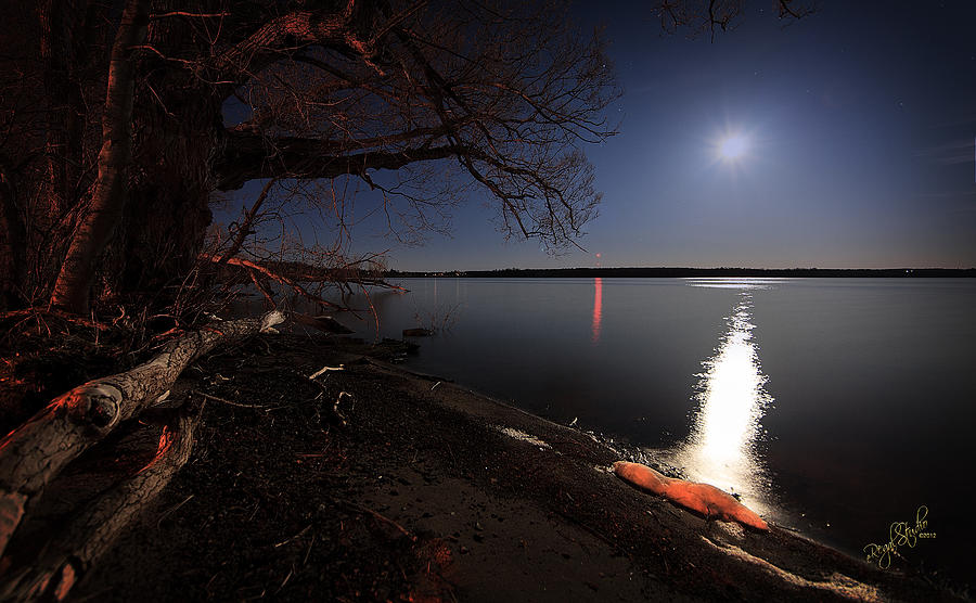 Moon Photograph - Setting Moon by Everet Regal