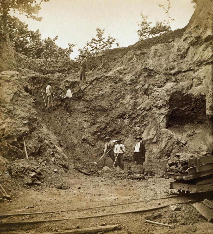 History Photograph - Several African American Men Working by Everett