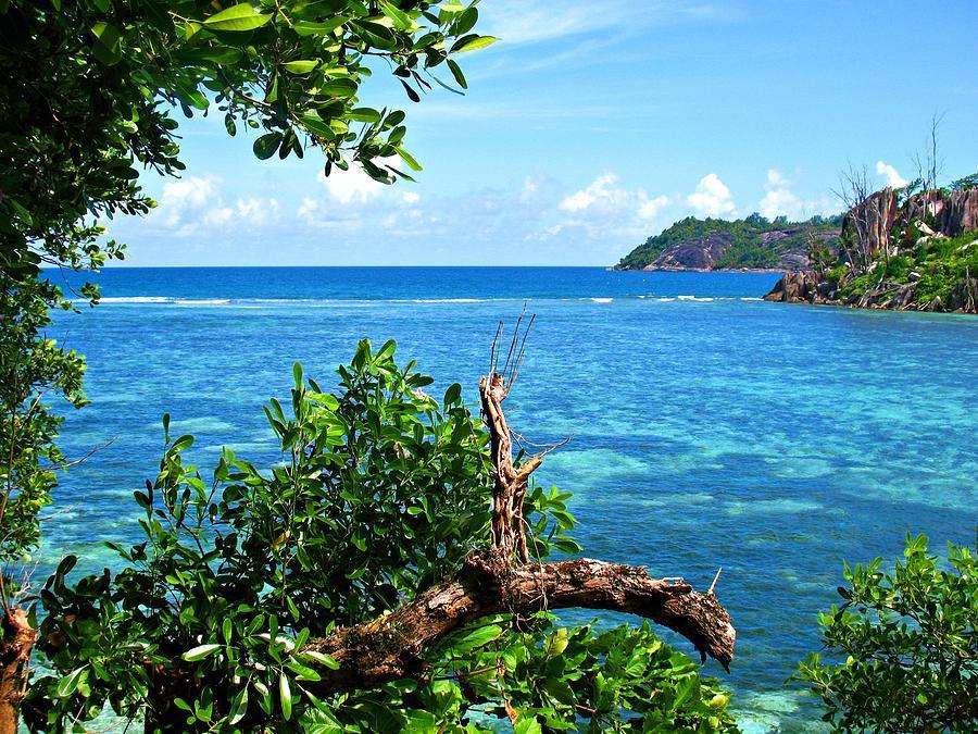 Seychelles Photograph - Seychelles by Jenny Senra Pampin