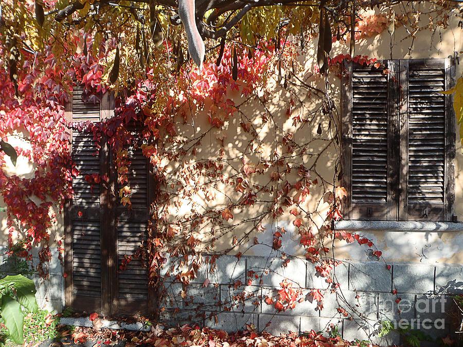 Landscapes Photograph - Shabby Entrance by Marisa Gabetta
