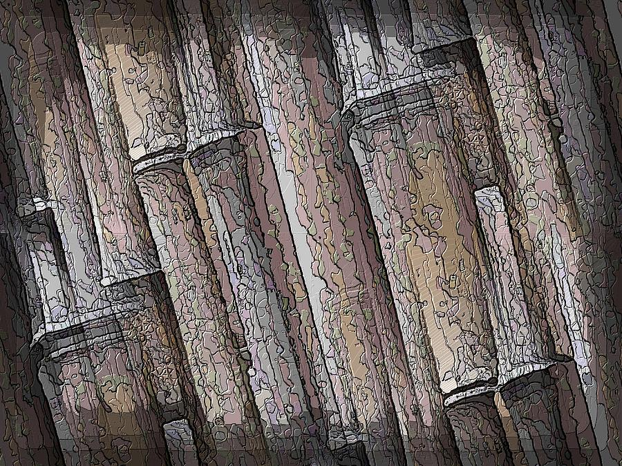 Bamboo Digital Art - Shades Of Bamboo by Tim Allen