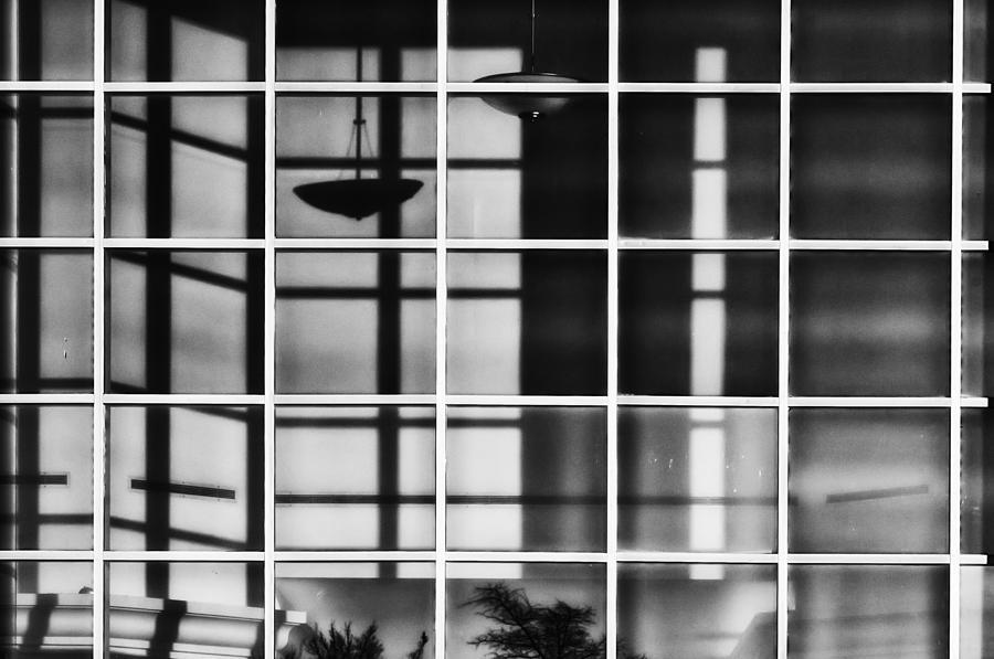 Shadows Photograph - Shadow Play by Brenda Bryant