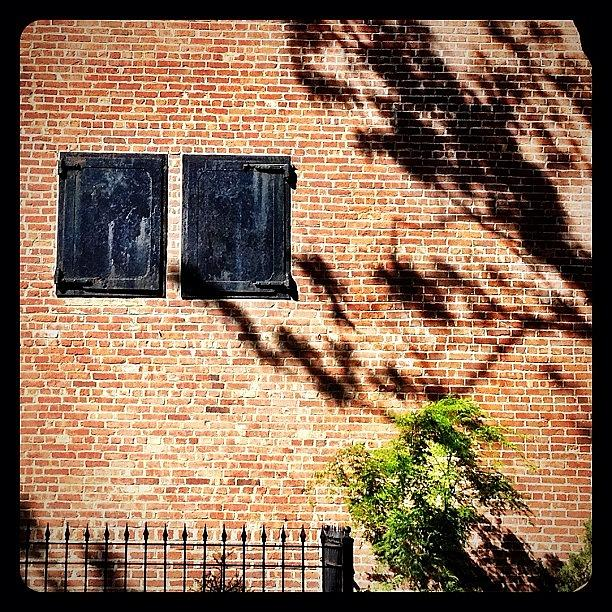 Brick Photograph - Shadows & Shutters by Natasha Marco