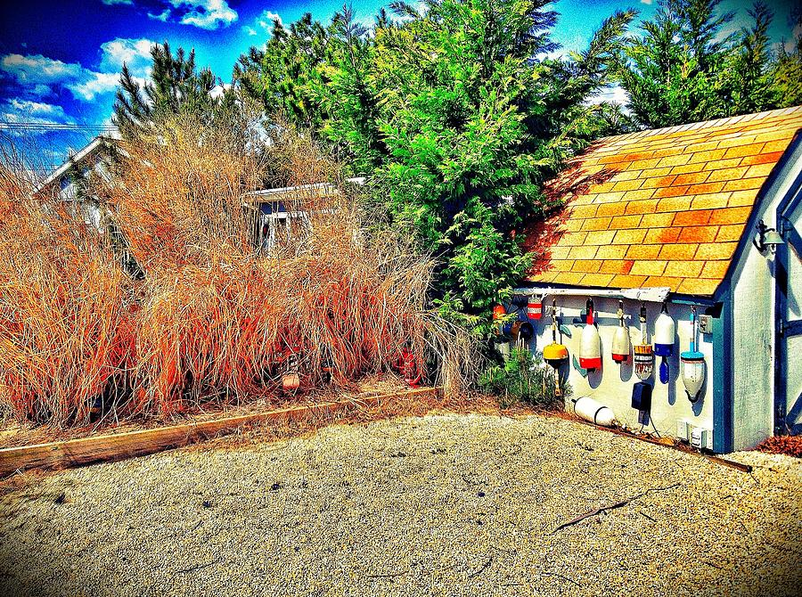 Iphoneography Photograph - Shed Some Light by Jaclyn Dilling