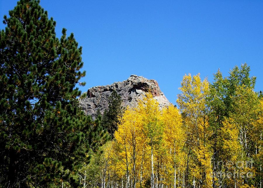 Autumn Photograph - Sheep Nose Mountain In The Autumn by Donna Parlow