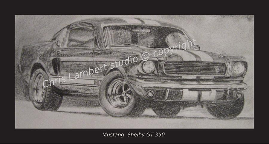 Horse Power Drawing - Shelby Gt  by Chris Lambert