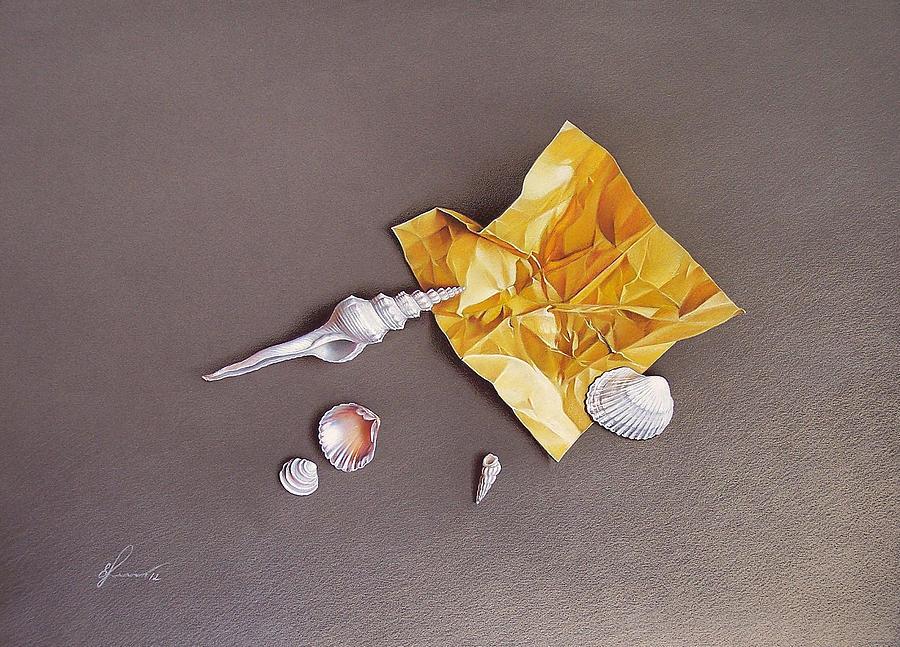 Shell Drawing - Shells Of The Day by Elena Kolotusha