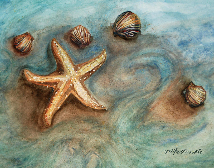 SHELLS WITH STAR by Margaret Fortunato