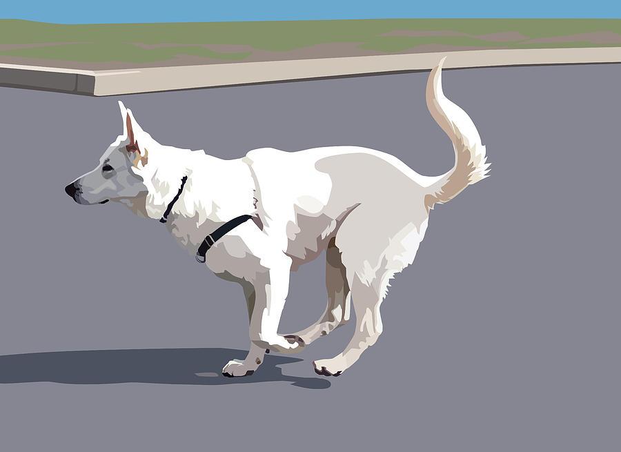 German Shepherd Dog Digital Art - Shepherd Sprint by Kris Hackleman