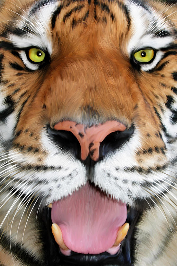 Tampa Digital Art - Sherekhan by Big Cat Rescue