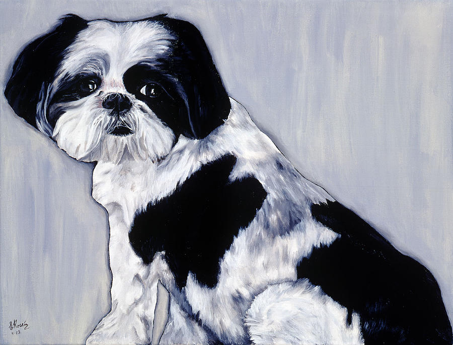 Dogs Painting - Shih Tzu by Leeann Stumpf