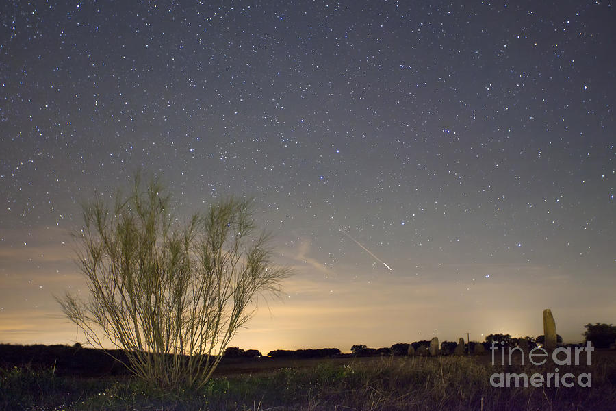 Dark Photograph - Shooting Star by Andre Goncalves