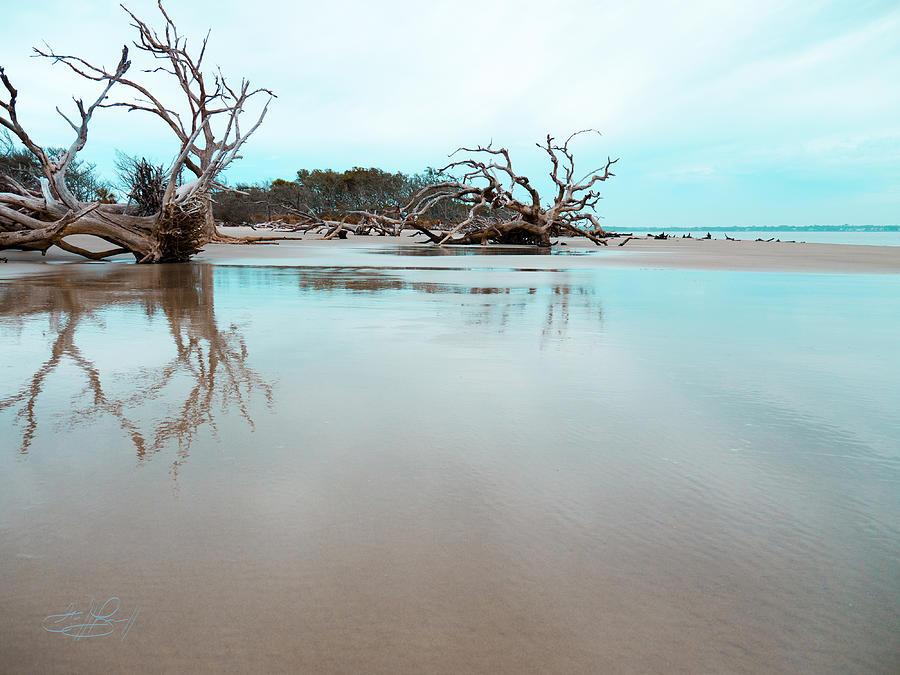 Ocean Photograph - Shoreline - Driftwood Beach Jekyll Island by Geoff Powell