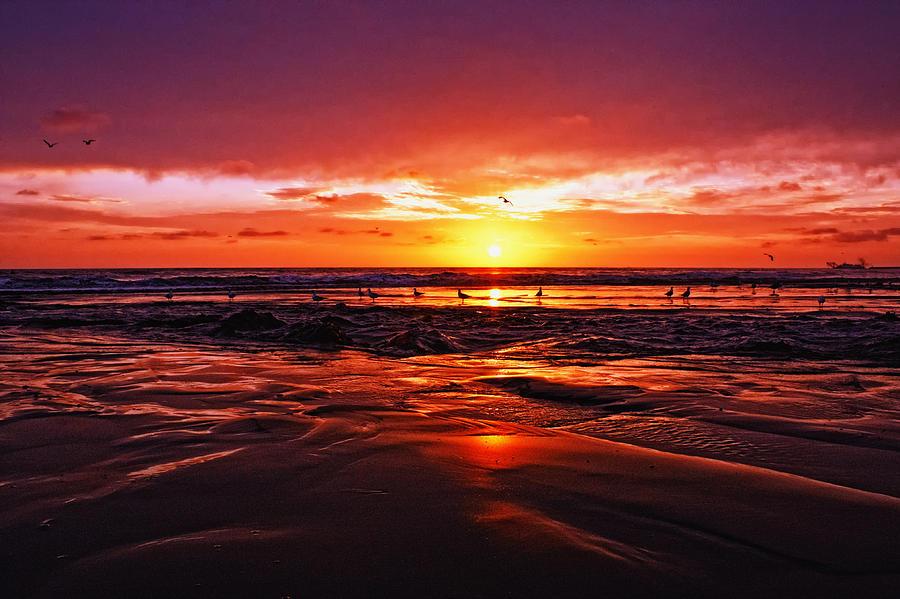 California Photograph - Shoreline Drama by Donna Pagakis
