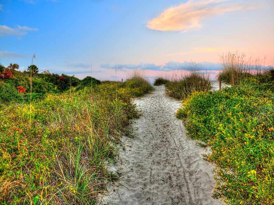 Shoreline Path To View Morris Island Lighthouse Photograph by Jenny Ellen Photography