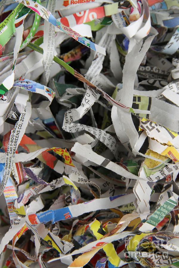 Shredded Paper Photograph - Shredded Paper by Photo Researchers, Inc.