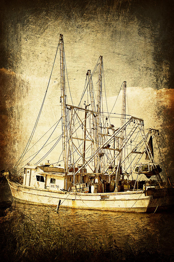 Shrimp Boat Photograph - Shrimper by Brian Wright