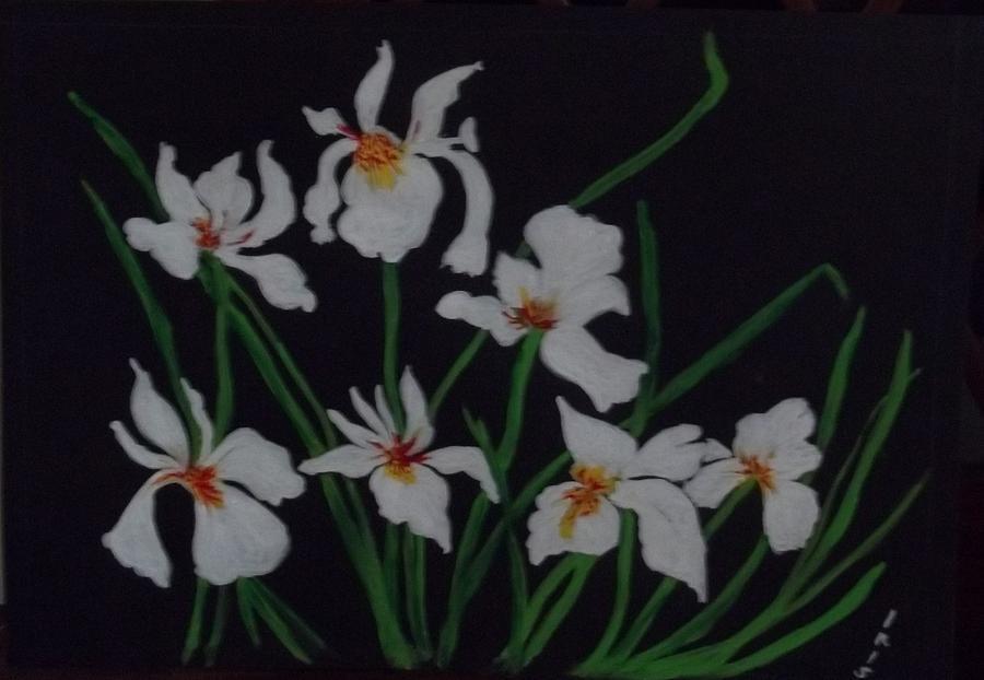 Varieties Of White Irises..snow Drop Etc Painting - Siberian Irises by Iris Devadason