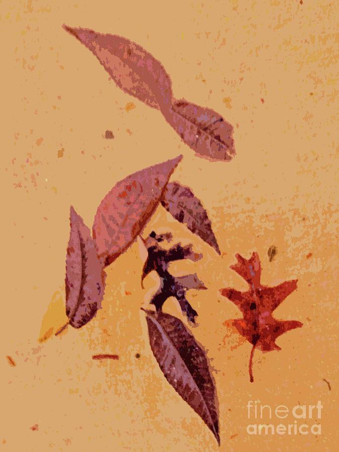 Pecan Leaves Photograph - Sidewalk Today by Joe Jake Pratt