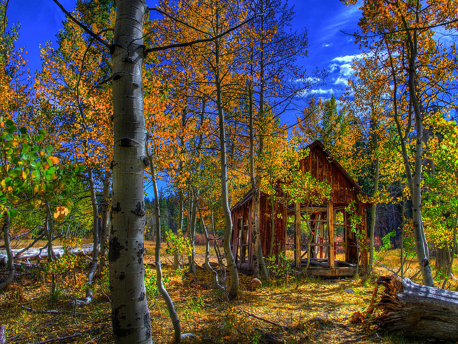 Sierra Nevada Fall Colors Barn Photograph By Scott Mcguire
