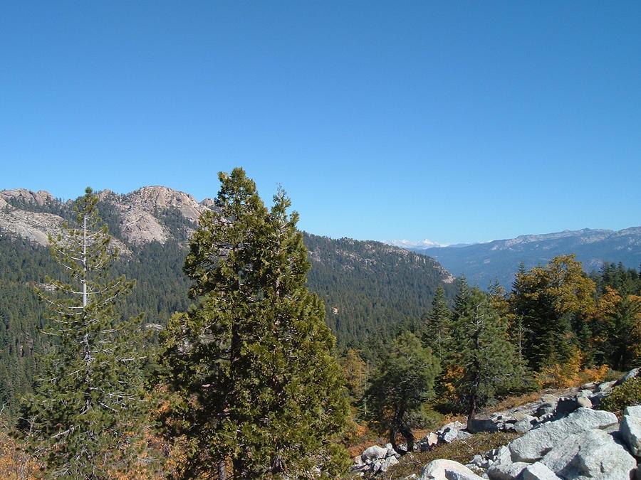 Nature Photograph - Sierra Nevada Mountains 2 by Naxart Studio