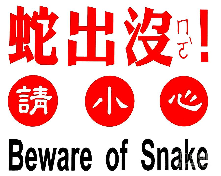 Sign Photograph - Sign In Chinese About Snake Danger by Yali Shi