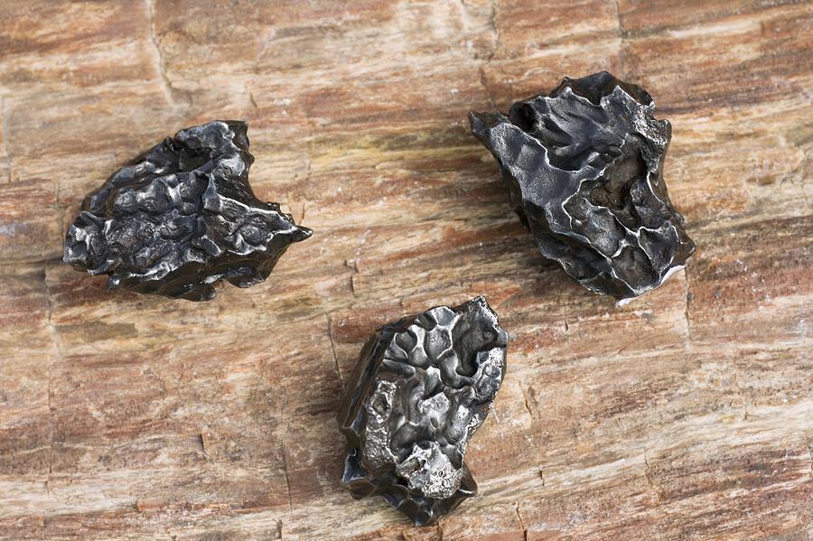 Sikhote-alin Meteorite Photograph - Sikhote-alin Meteorite Fragments by Dirk Wiersma