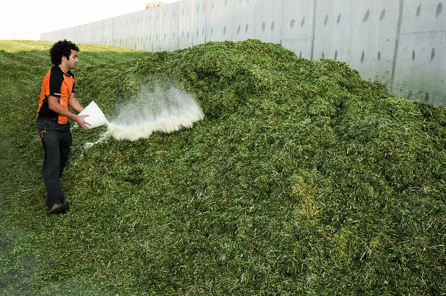 Backhoe Loader Photograph - Silage Fermentation by Photostock-israel