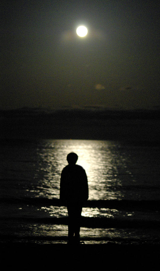 Moon Photograph - Silhouette by Marilyn Wilson