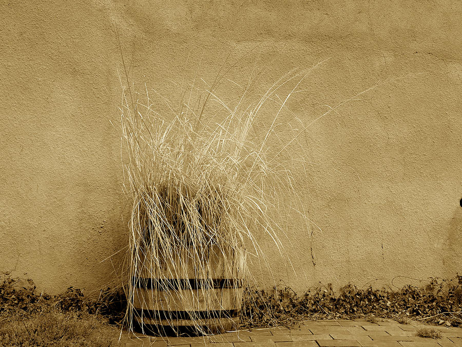 Adobe Wall Photograph - Silver City Still Life by FeVa  Fotos