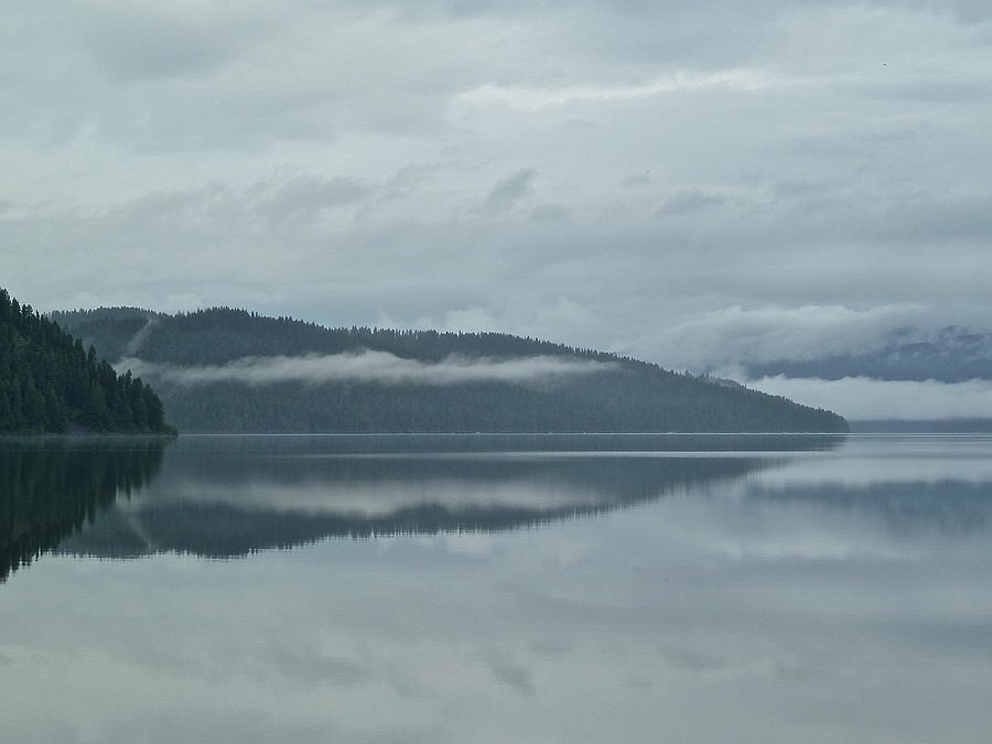 Priest Photograph - Silver Morning by Nicole Chapman
