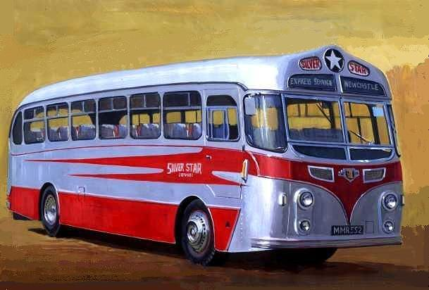 Coach Painting - Silver Star Tiger by Mike  Jeffries