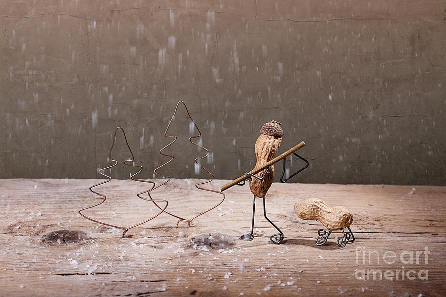 Peanut Photograph - Simple Things - Christmas 04 by Nailia Schwarz