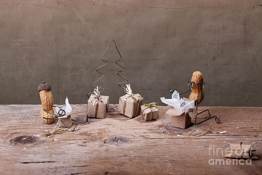 Peanut Photograph - Simple Things - Christmas 05 by Nailia Schwarz