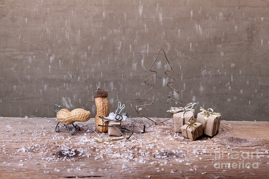 Peanut Photograph - Simple Things - Christmas 07 by Nailia Schwarz