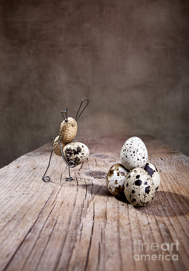 Easter Photograph - Simple Things Easter 01 by Nailia Schwarz