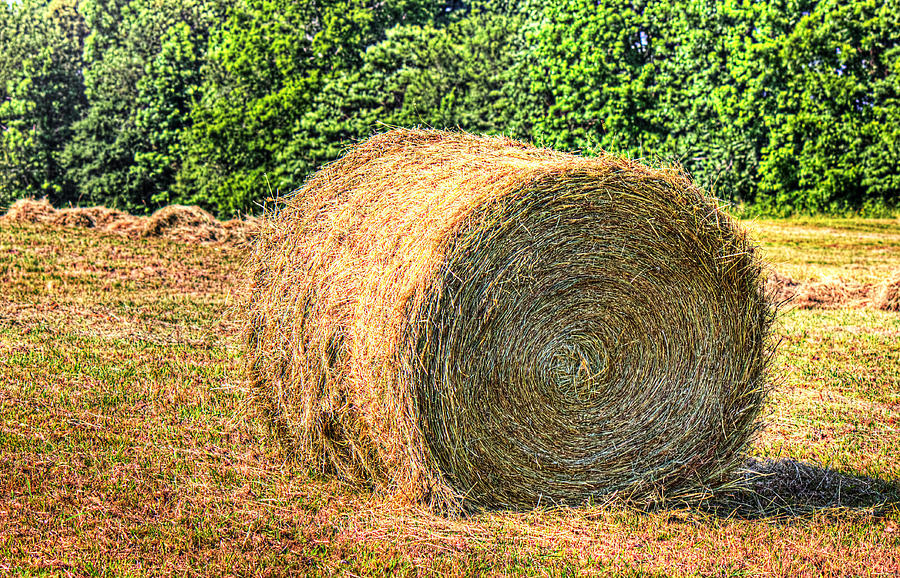 Hay Photograph - Single Bale by Barry Jones