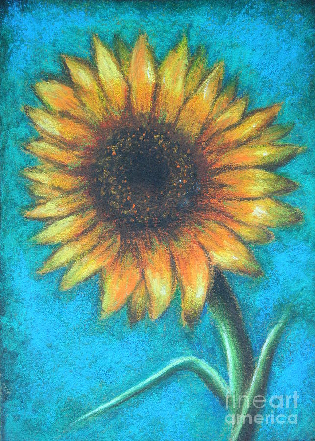 single sunflower pastel by gabriela valencia