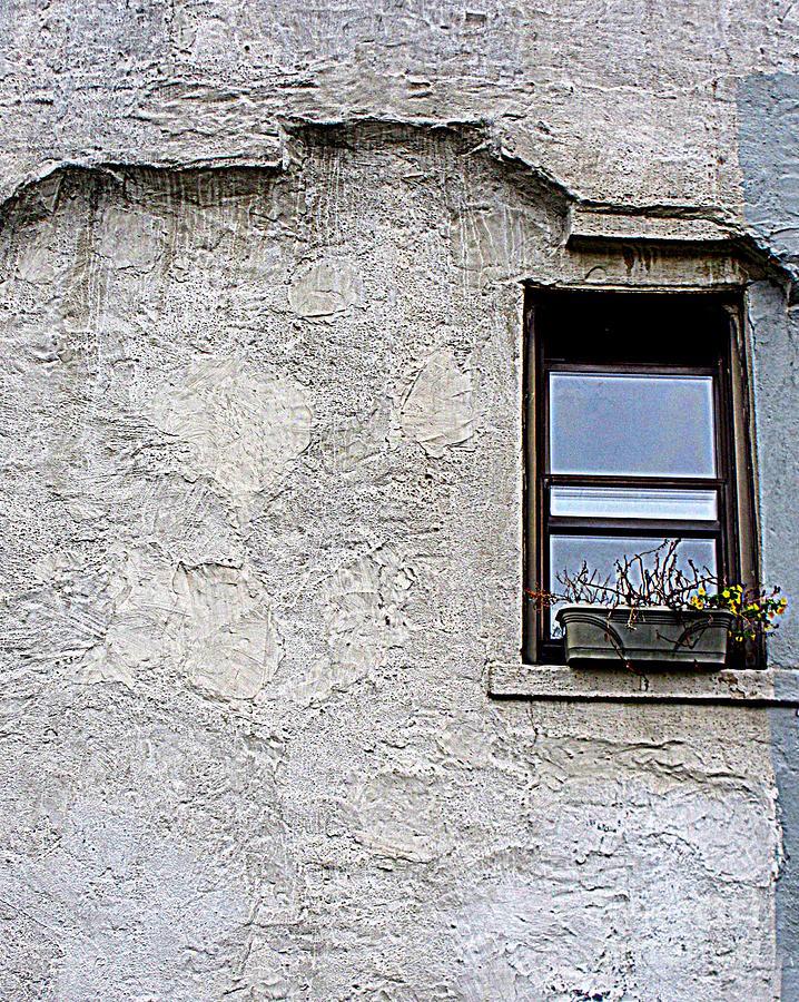 Single Window Photograph by Maria Scarfone