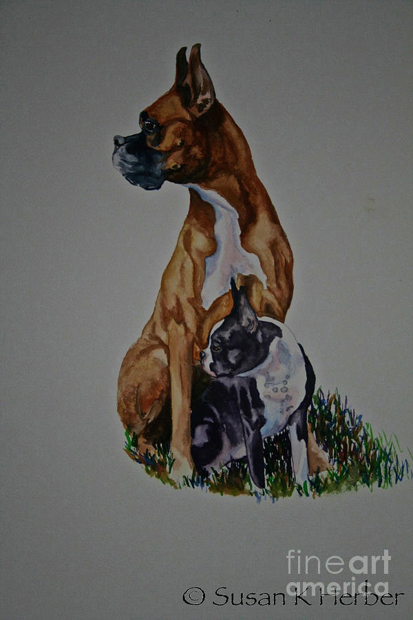 Boxer Pastel - Sister Story by Susan Herber