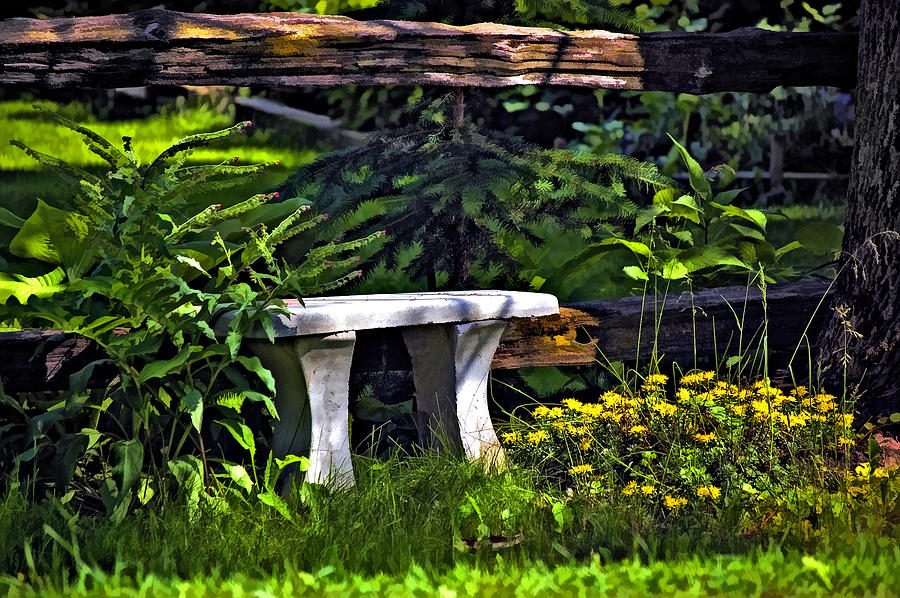 Landscape Photograph - Sit A Spell by Steve Harrington
