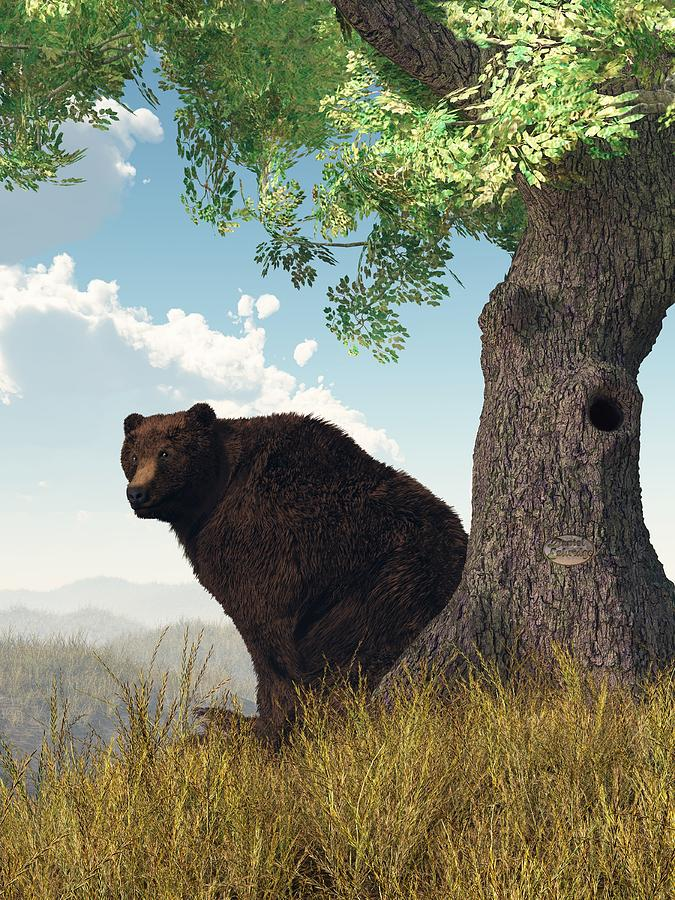 Bear Digital Art - Sitting Bear by Daniel Eskridge