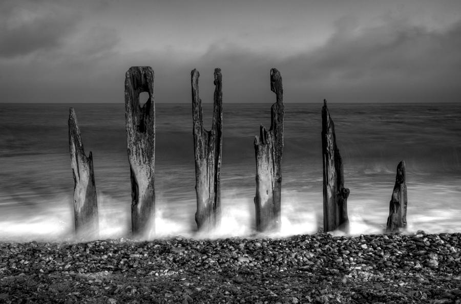 Black And White Photograph - Six Sticks by Mark Leader