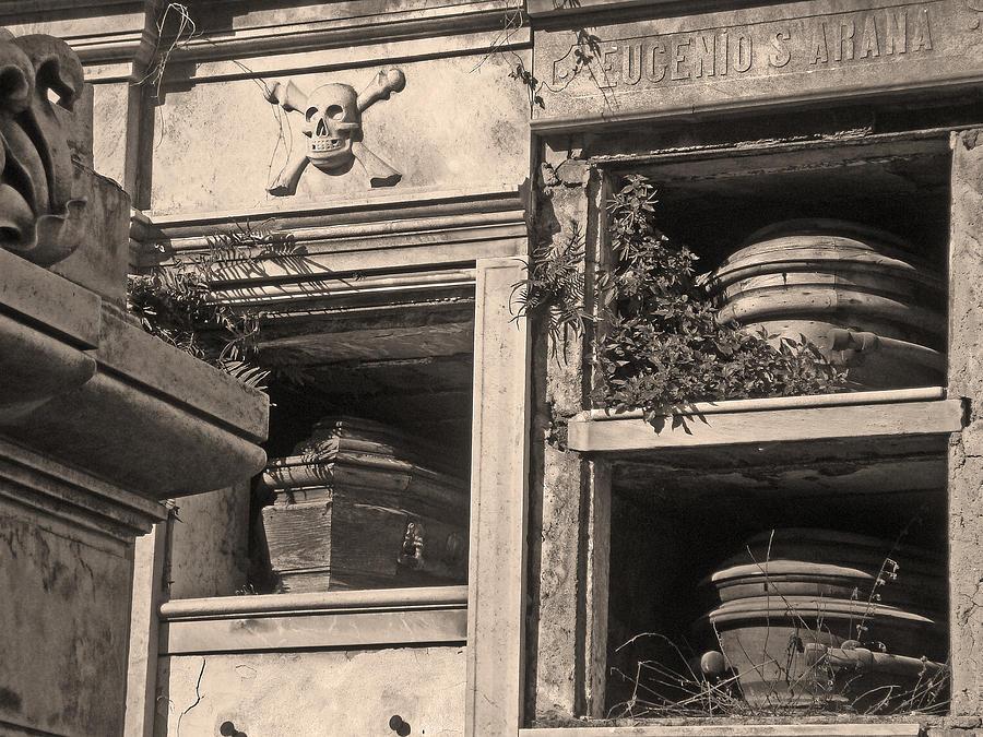 Skull And Crossbones Photograph